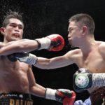 2019年6月の日本で行われたボクシングの主な試合結果