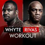 【2019年7月21日】ディリアン・ホワイト vs オスカル・リバス【WBC世界ヘビー級暫定王座決定戦!】